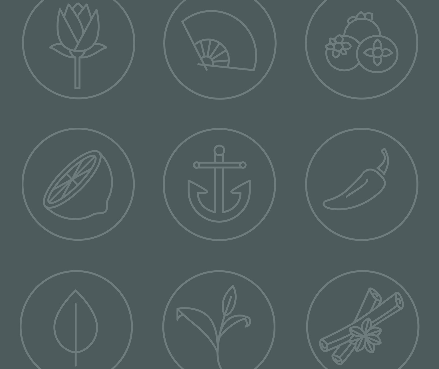 Essenza custom icons and illustrations shown in a grid